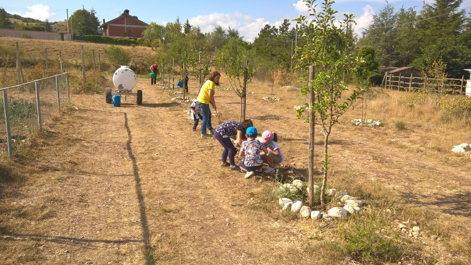 Giardino estivo: agricoltura e bimbi