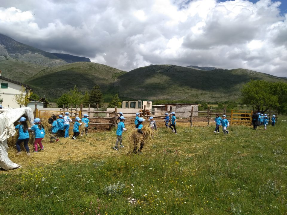 Scuola in fattoria